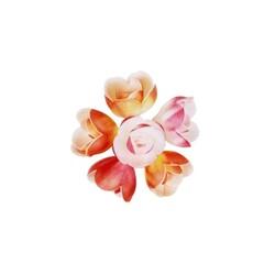 Rose décor nuancé aérographe (x72)