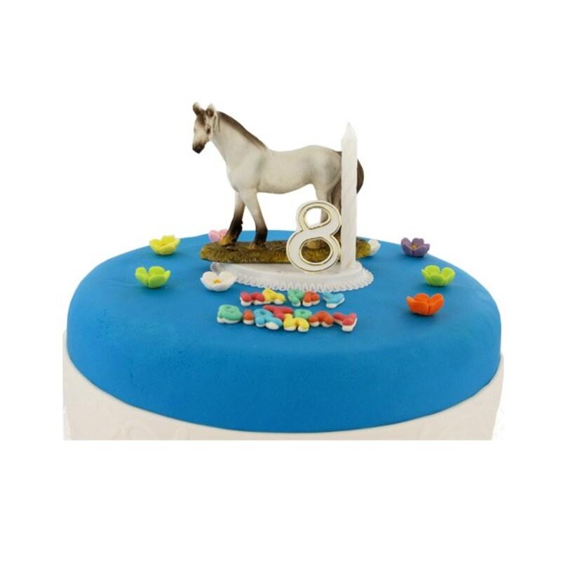 Kit bougie cheval