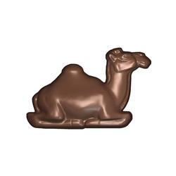 Moule chocolat polycarbonate dromadaire