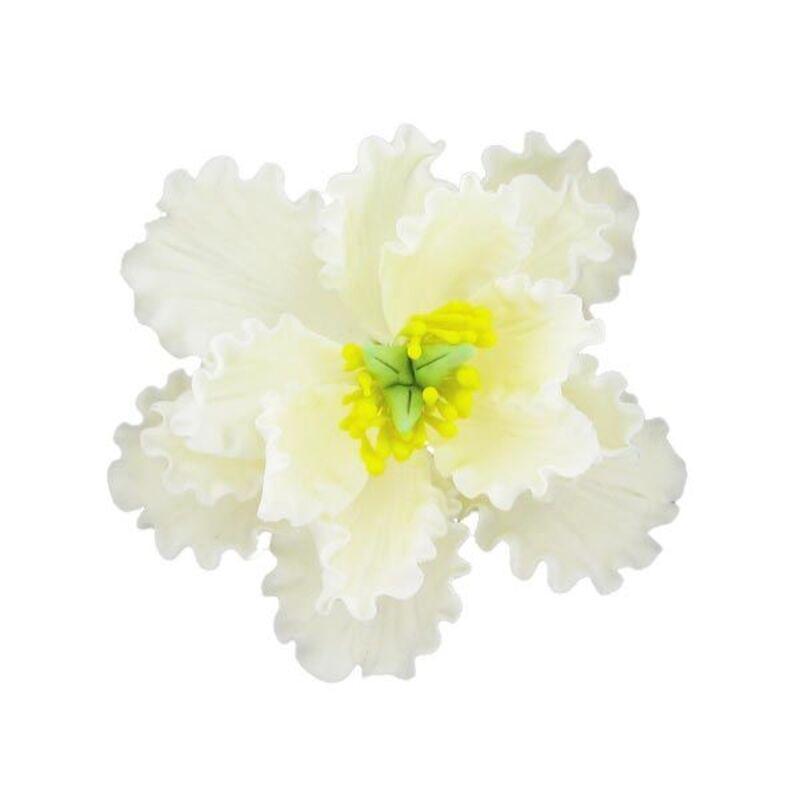 Fleur en sucre Pivoine blanche pastillage 11 cm