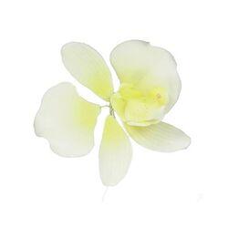 Fleur en sucre Orchidée blanche et jaune pastillage Gatodéco