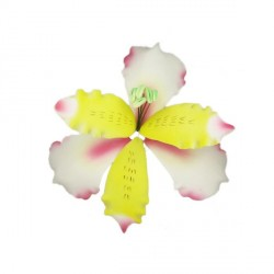 Lys des incas blanc et jaune pastillage Patisdécor
