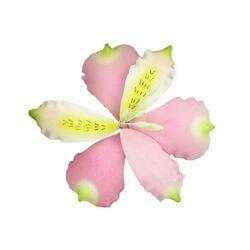 Lys des incas rose et blanc en sucre (pastillage)