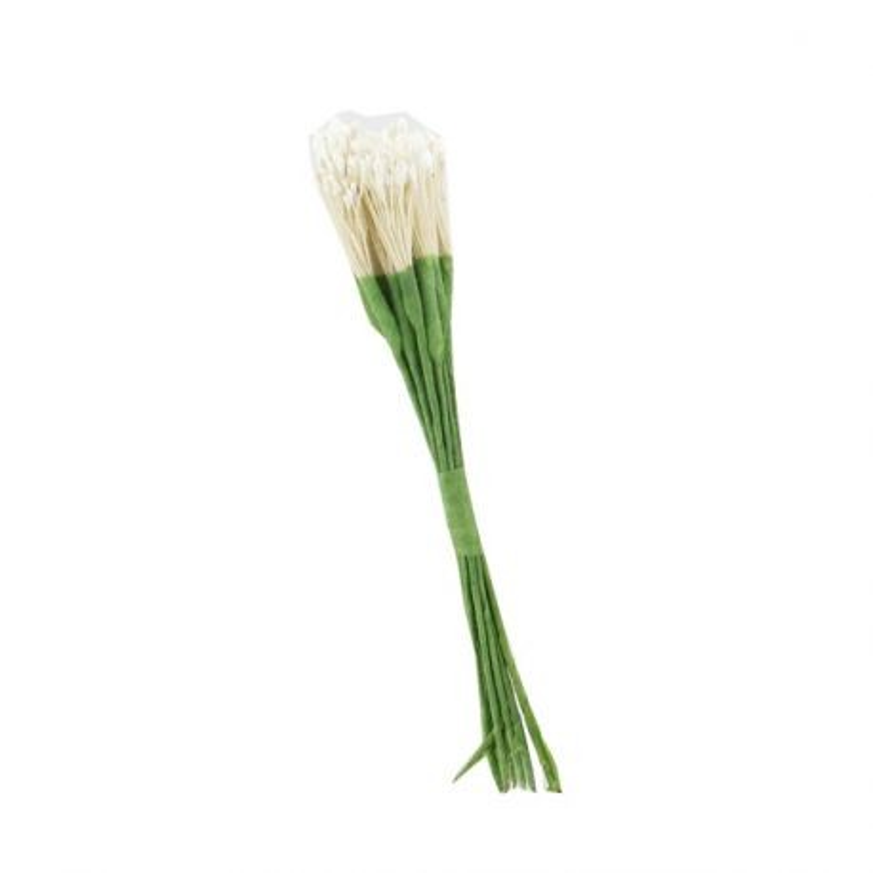 12 bouquets de pistils blancs