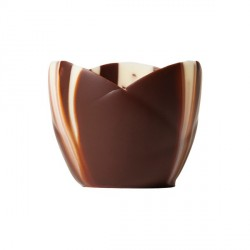 Coupelle chocolat marbré Crocus (x24)