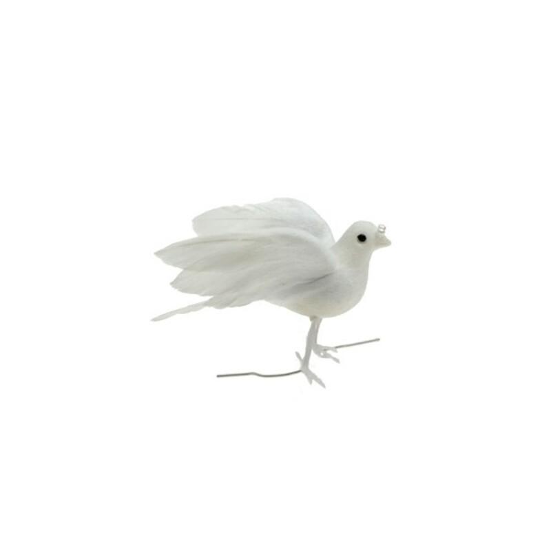 Petite Colombe ailes déployées