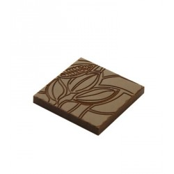 Moule Chocolat Napolitains Cabosses