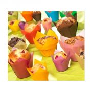 Caissette Tulipcup assorties (x300)