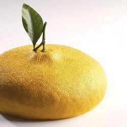 Moule silicone Citron Pavoni