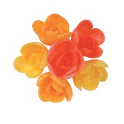 Mini-roses assorties arôme fruits exotiques (x72)