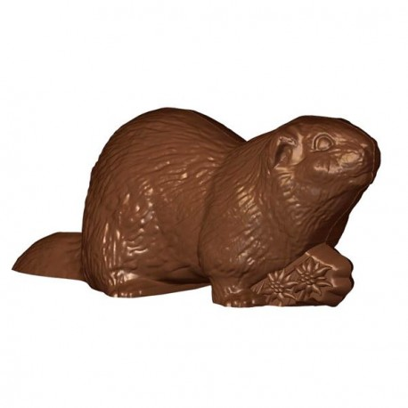Moule chocolat Marmottes