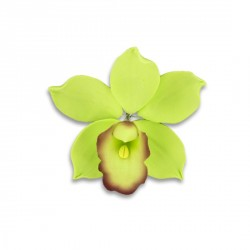 Orchidée jaune verte en pastillage Gatodéco