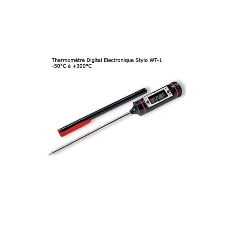 Thermomètre Digital électronique Stylo