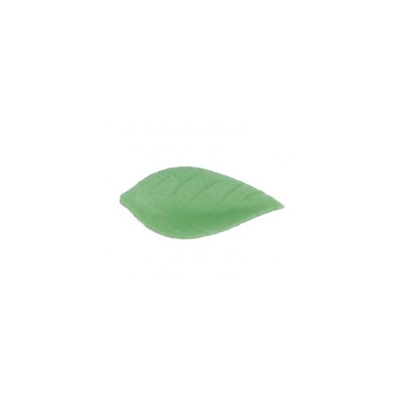 Feuille de liseron vert clair (x500)