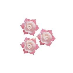 Jonquille blanche et rose (x28)
