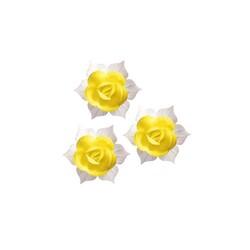 Jonquille jaune et blanche (x28)