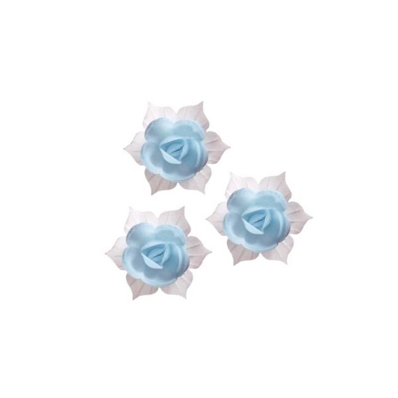 Jonquille bleue et blanche (x28)