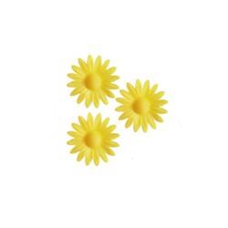 Marguerite jaune (x100)