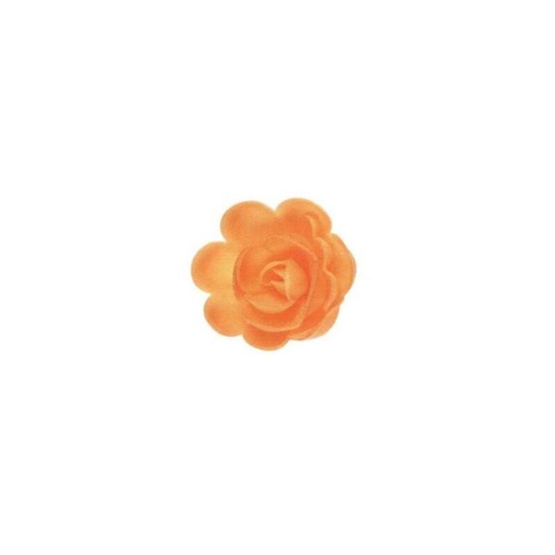 Grande rose abricot (x36)