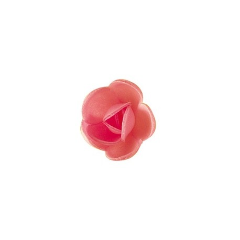 Petite rose carmin (x72)