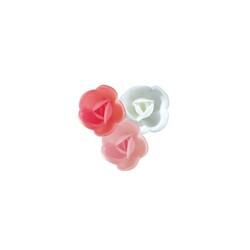 Petites roses assorties (x72)