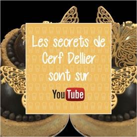 Ne manquez pas nos tutos vidéo sur notre chaine You Tube Cerf Dellier !